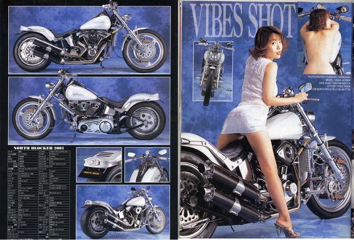 VIBES Vol.94 2001.8月号 表紙